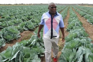 The 140-hectare cabbage and tomato farm belonging to former ANC Youth League president Julius Malema, was sold for R2.5 million at the auction, although it is actually worth about R4 million.