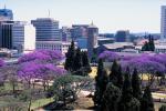 Harare CBD's Skyline