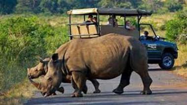 Limpopo Tourism - Kruger Park